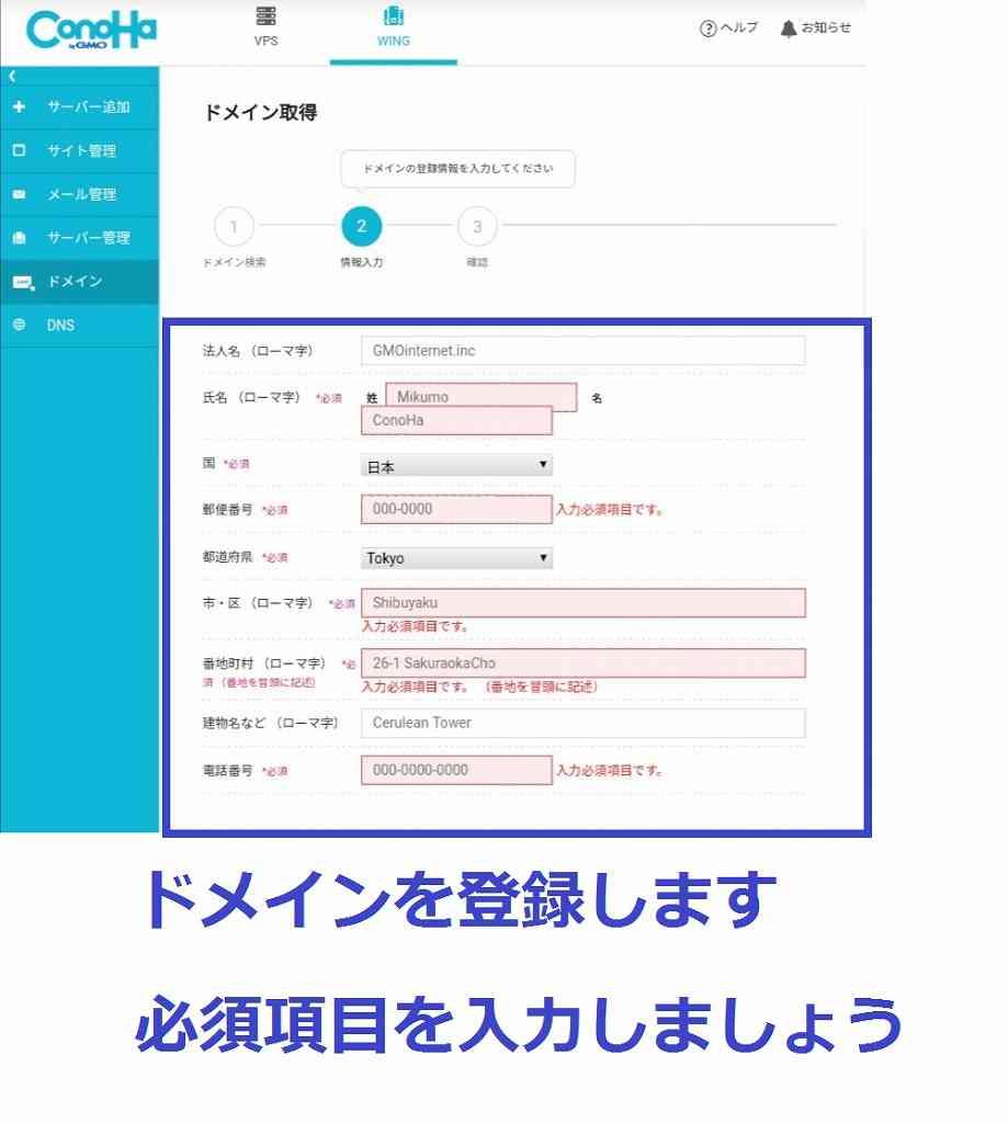 スマホでブログの始め方ConoHaWINGドメイン情報登録